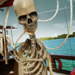 Skeleton — Stock Photo