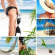 Stock Photo: Tropic mix