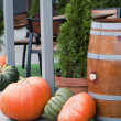 Pumpkins, decoration — Stock Photo