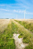 Field and wind turbine — Stock Photo