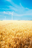 Field and wind turbine — Stock Photo