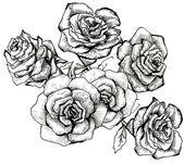 Flower sketch bouquet — Foto de Stock