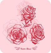 Conjunto de desenho de flor — Vetorial Stock