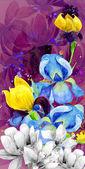 Nastavit květiny Iris — Stock fotografie