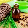 Oil cedar with pine cones and soap — 图库照片