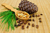 Nuts and cone of cedar on a bamboo mat — Stock Photo