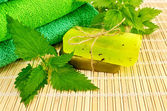 Soap homemade green with nettles — Stock Photo