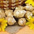 Jerusalem artichokes with yellow flowers and a basket — Stock Photo