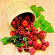 Berries in a birch tueski — Stock Photo