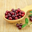 Lingonberry in a wooden spoon on a bamboo mat — Stock Photo