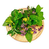 Herbs on a round board — Stock Photo