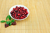 Lingonberry in a cup on a bamboo mat — Stock Photo