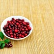 Lingonberry in a white cup on a bamboo mat — Stockfoto