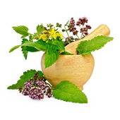 Herbs in a mortar and on the table — Stock Photo