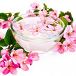 Apple pink blossom in a cup of water — Stock Photo