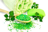 Salt in a spoon and soap green with nettles — Stock Photo