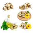 Jerusalem artichokes set — Stock Photo