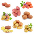 Stock Photo: Potatoes different set