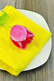 Tulip pink on the plate — Stock Photo