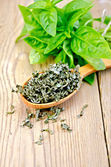 Basil green fresh and dry in a spoon on the board — Stock Photo