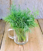 Dill fresh in a glass mug — Stock Photo