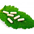 Capsules beige on green leaf sage — Stock Photo