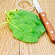Stock Photo: Spinach with knife and twine on board