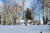зимний пейзаж 2 — Стоковое фото