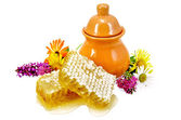Honeycomb with pitcher and flowers — Stockfoto