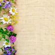 Frame of wild flowers on sackcloth 2 — Stock Photo