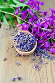 Herbal tea from fireweed on wooden spoon — Stock Photo