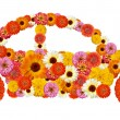 Floral car shape — Stock Photo