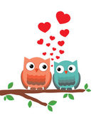 Owls in Love — Stock Vector