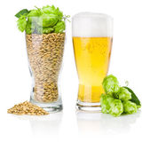 Glass of fresh beer and cup full of barley and hops isolated on — Stock Photo