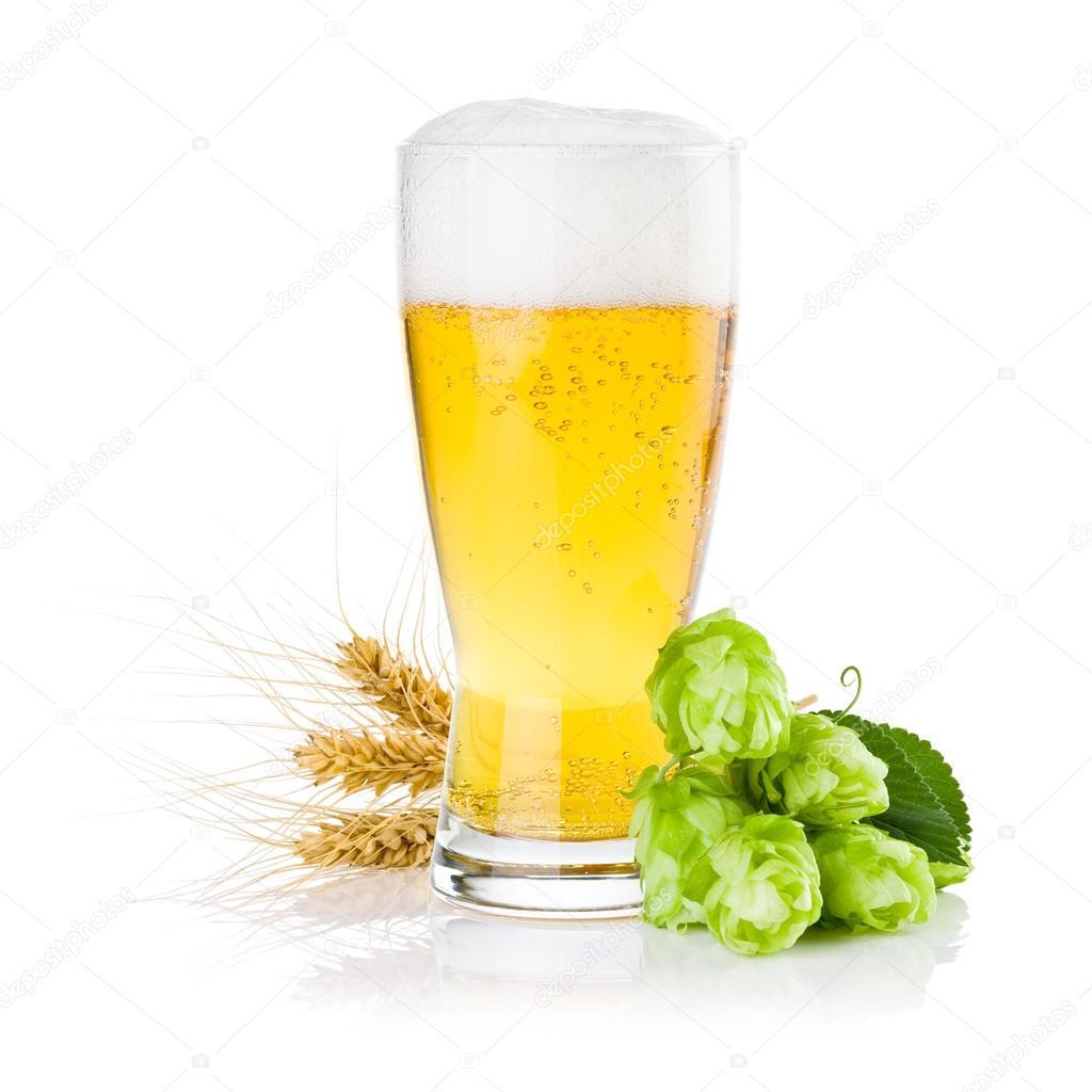 Пиво Напитки обои (87 фото) для рабочего стола