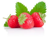 Three ripe red strawberries and a leaf isolated on white backgro — Stock Photo