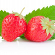 Two ripe red strawberries and a leaf isolated on white backgroun — Stock Photo