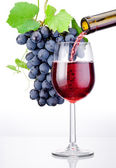 Pouring a glass of red wine and bunch of grapes with leaves isol — Stock Photo