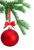 рождественский бал висит на еловой ветке дерева на белом ба — Стоковое фото
