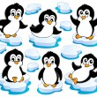 Cute penguins collection 2 — Imagen vectorial