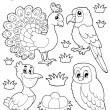 Coloring book bird image 4 — Stock Vector #17411309