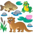 River fauna collection 1 — Stock Vector