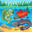 Freshwater fish theme image 3 — Stock Vector #19819959