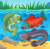 Freshwater fish theme image 3 — Stock Vector