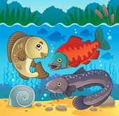 Freshwater fish theme image 5 — Stock Vector