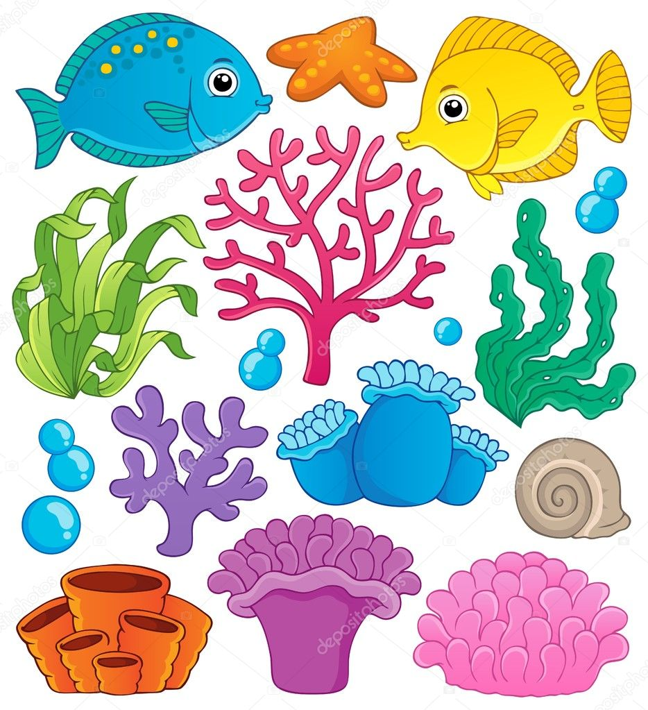Cartoon coral reef clip art together with cartoon drawing of marine
