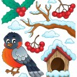 Winter bird theme collection 1 — Stock Vector