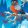 Stock Vector: Winter bird theme image 1