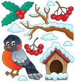 Winter bird theme collection 1 — Stock Vector
