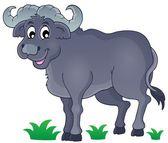 African bull image 1 — Stock vektor